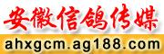 安徽信鸽传媒