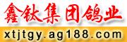 鑫�集�F���I
