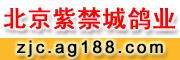 北京紫禁城鸽业