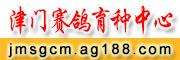 天津津门赛鸽传媒