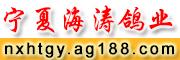 宁夏海涛鸽业