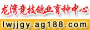 龙湾竞技鸽业育种中心