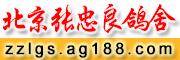 北京张忠良鸽舍