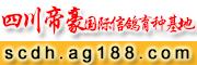 四川帝豪国际信鸽育种基地