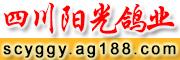 四川阳光鸽业