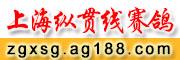上海纵贯线赛鸽