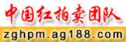 中国红拍卖团队