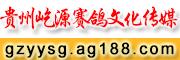 贵州屹源赛鸽文化传媒