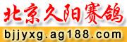 北京五环鸽业