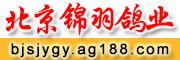 京南赛鸽传媒