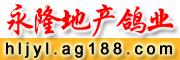 黑龙江永隆地产鸽业